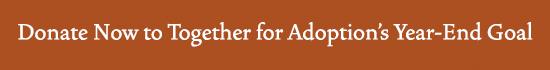 Donate 2015 Button