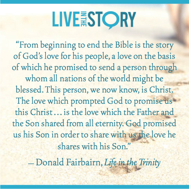 Live in the Story Quotation - Donald Fairbairn