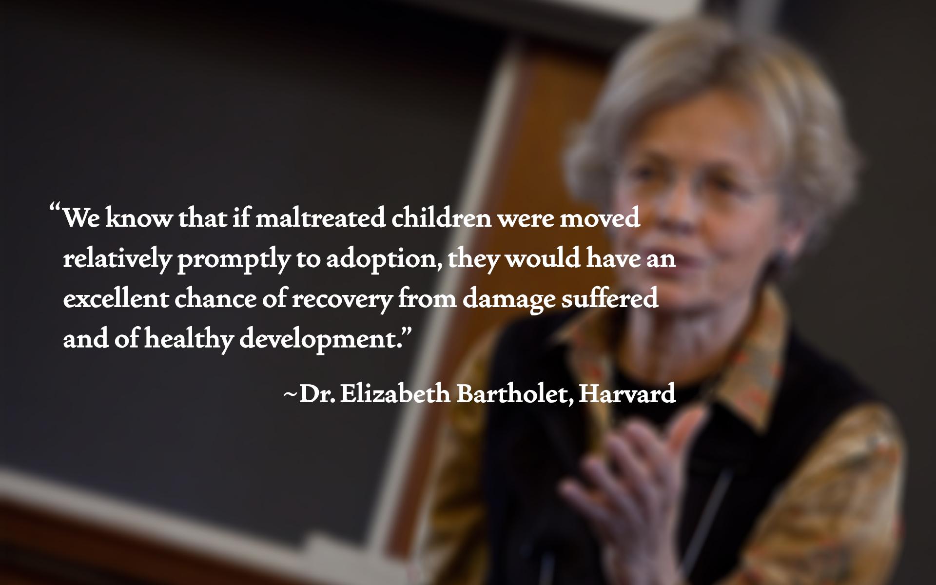 Wallpaper Elizabeth Bartholet - maltreated children